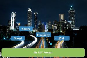 IoT Pilot Execution Options